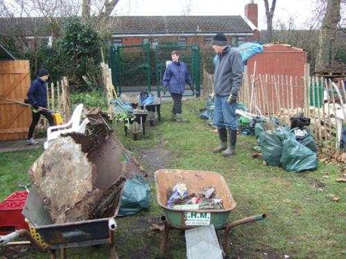 Northfield Allotments - Hedgerow restoration