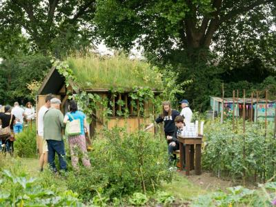 Northfield Allotments open day