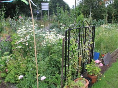 EDAS open day - Best flower garden