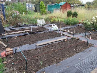 Covering the plot at Northfields Allotment