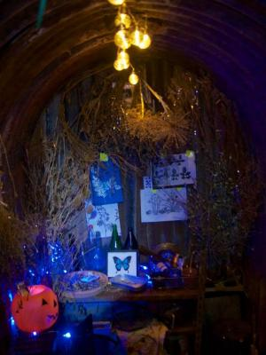 Northfield Allotments Halloween Open Day 2016