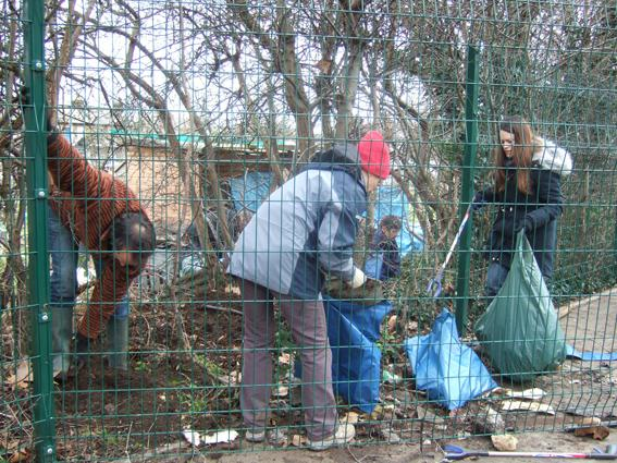Volunteers clearing rubbish from the hedge